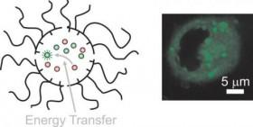 """Bilim adamları birbirini tamamlayan molekülleri hücre içine taşıyan bir """"nano denizaltı"""" geliştiriyorlar"""