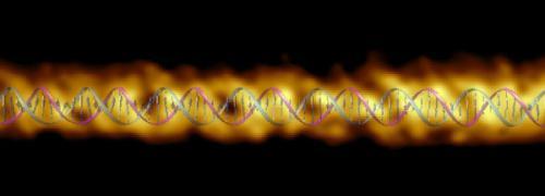 DNA çifte sarmal ölçümleri