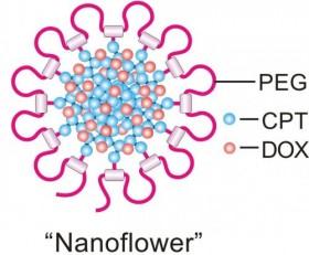 """""""Nano papatyalar"""" kanser hücrelerine İlaç karışımları taşıyor"""