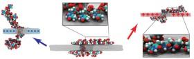 Yüklü grafen, DNA'nın moleküler jimnastik sergilemesi için bir sahne sağlıyor