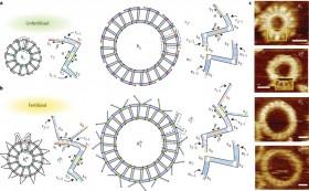 DNA'dan Yapılma Kendini Eşleyen Nanoyapılar