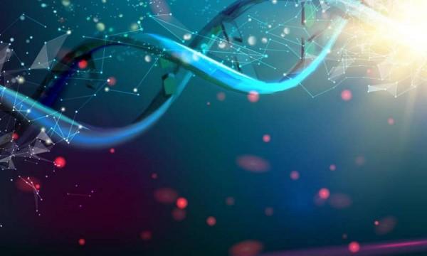 DNA'yı Kullanarak Dünyanın En Küçük Termometresi Yapıldı