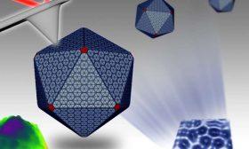 Nanoteknoloji, Bakteriyel 'Makinelerin' Saklı Derinliğini Ortaya Çıkartıyor