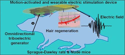 Elektrik Teknolojisi, Kelliği Tersine Çevirmeye Yardımcı Olabilir