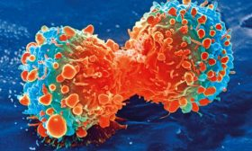 Küçük Fluoresan Karbon Noktalar, Kanser Tedavisini Daha Güvenli ve Daha Etkili Hale Getirebilir
